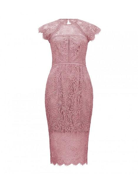 Tara Lace Pencil Dress